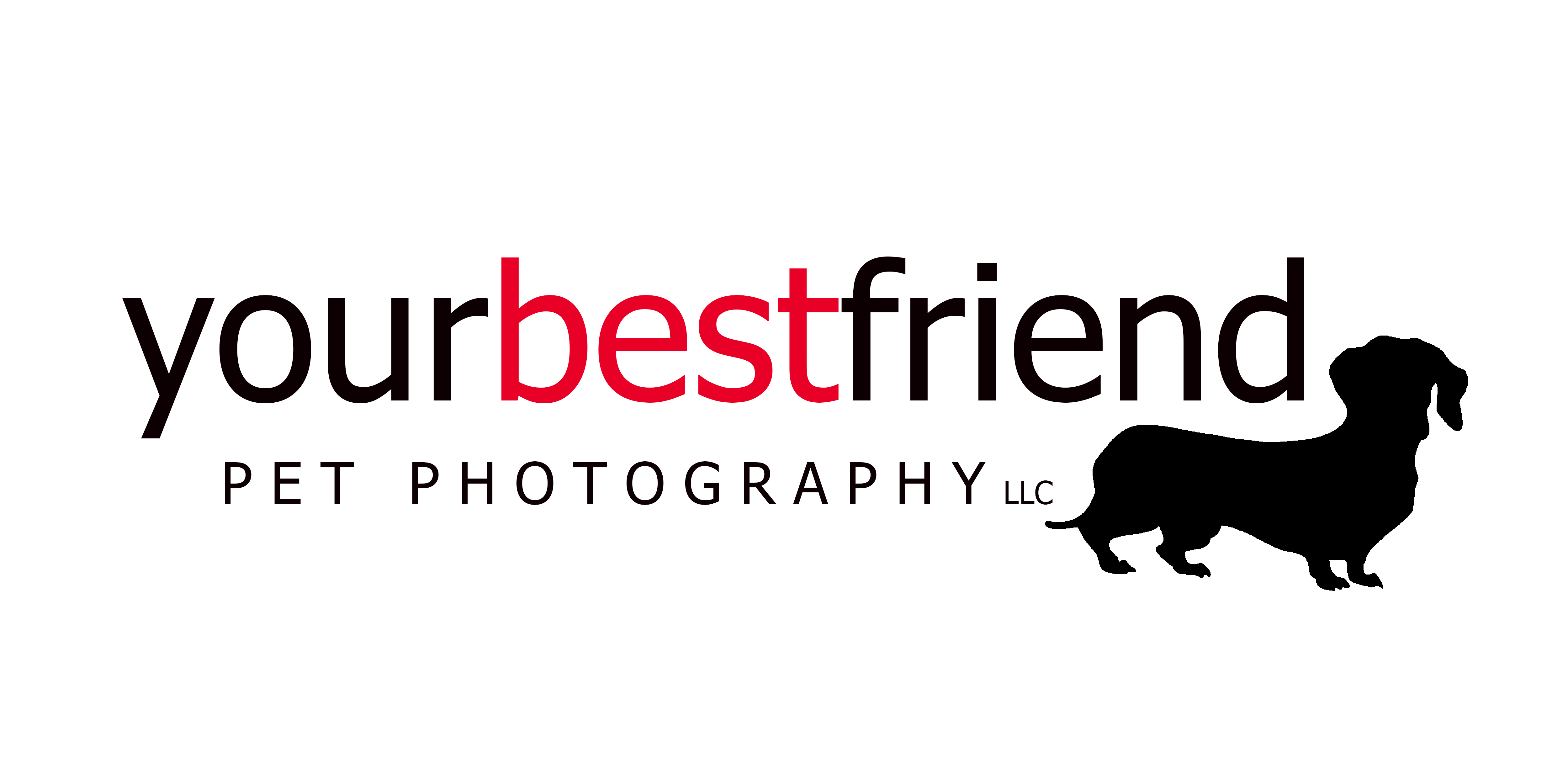 Your Best Friend Pet Photography Specializes in Natural Light Dog Portraits