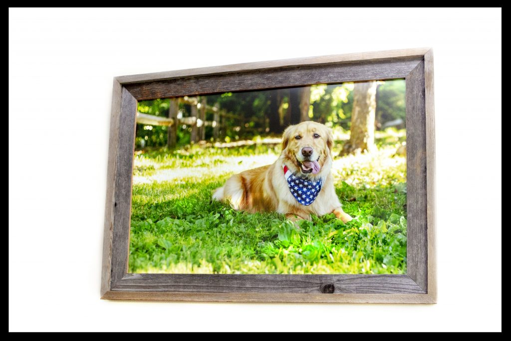 Wood Framed Portrait Prints