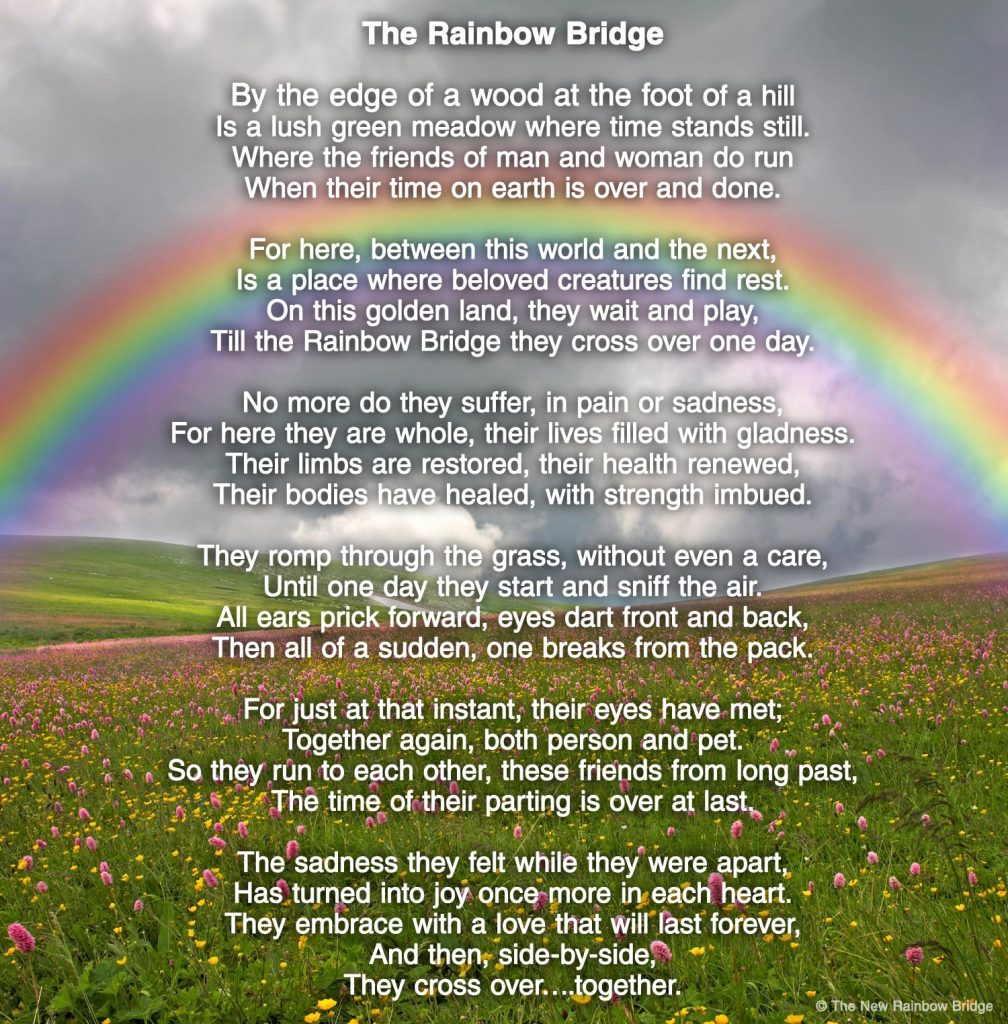Are you familiar with the beautiful Rainbow Bridge Poem?
